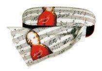 Szemüvegtok textilbevonatú törlőkendővel,16x4x6,5cm, Mozart