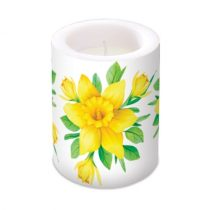 Daffodils in Bloom átvilágítós gyertya 10x12cm