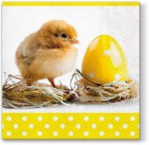 Chicklets papírszalvéta 33x33cm,20db-os