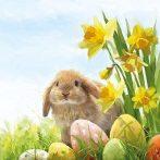 AMB.23301640 Fluffy papírszalvéta 33x33cm,20db-os