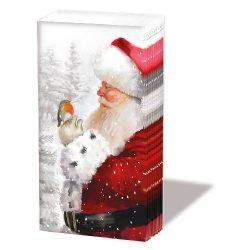 AMB.32210650 Telling Robin Papírzsebkendő,10db-os