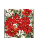 AMB.32513570 Poinsettia All Over papírszalvéta 25x25cm,20db-os