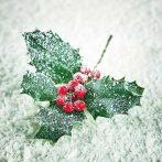 Frozen Ilex papírszalvéta 33x33cm,20db-os