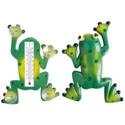 Tapadókorongos békás hőmérő