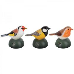 Üdvözlő madarak